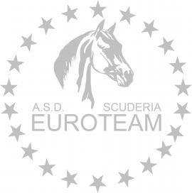 scuderia euroteam.png