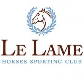 horses-sporting-club.jpg