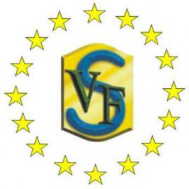 logo svf (1).jpg